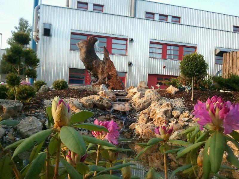 Biologischer Pool Garten Bäumen  nachhaltiger Bau